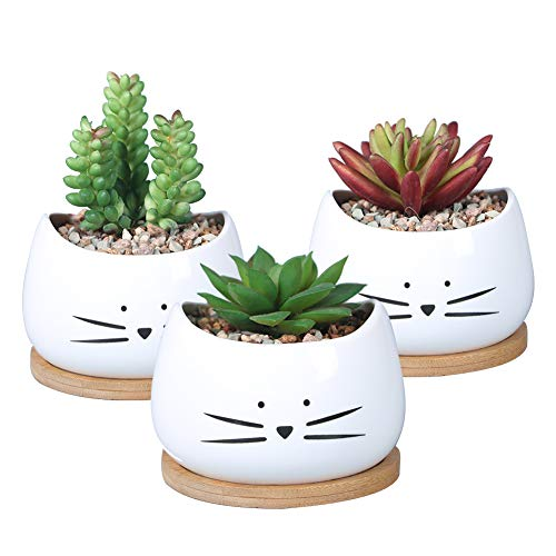 Koolkatkoo 3.2 Inch Cute Cat Ceramic Succulent Planter Pots with Removable Saucer Unique Cactus Planters Porcelain Decorative Flower Pot for Cat Lovers Set of 3 White