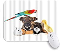 EILANNAマウスパッド 動物犬猫ウサギオウムアヒルかわいいペット肖像画光沢のある飼いならされた小さなふわふわ ゲーミング オフィス最適 高級感 おしゃれ 防水 耐久性が良い 滑り止めゴム底 ゲーミングなど適用 用ノートブックコンピュータマウスマット
