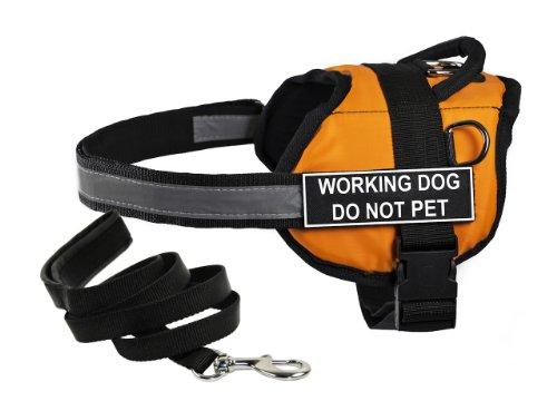 Dean & Tylers DT Works Hundegeschirr mit Aufschrift Working Dog Do Not Pet, Größe S, mit gepolsterter Leine, 183 cm, Orange