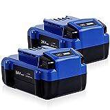 2PACK DSANKE 24V 6.0Ah Lithium-ion Battery for Kobalt...