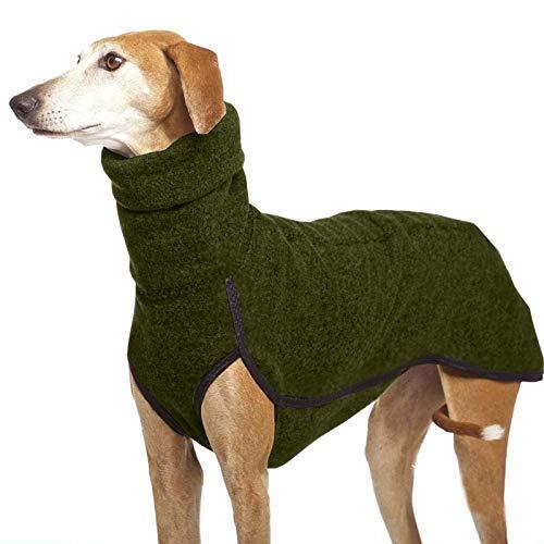 Collar mediano grande para perros grandes, gran danés, galgo, Pitbull, ropa para mascotas (color: verde, talla: L) ggsm