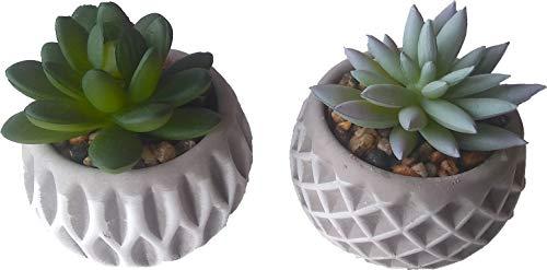 Sukkulenten in grauem Topf, 2 STK. / Kunstpflanze künstliche Pflanze Büro Deko Sukkulenten im Topf Plastikpflanzen klein Blumentopf Kunstblumen