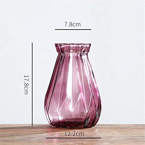 LIANGJIE Creatief Transparant Vaas Glas Creatieve Woonkamer Decoratie Gekleurde Vaas Gedroogde Bloem Vaas Grote Buik Glas Vaas