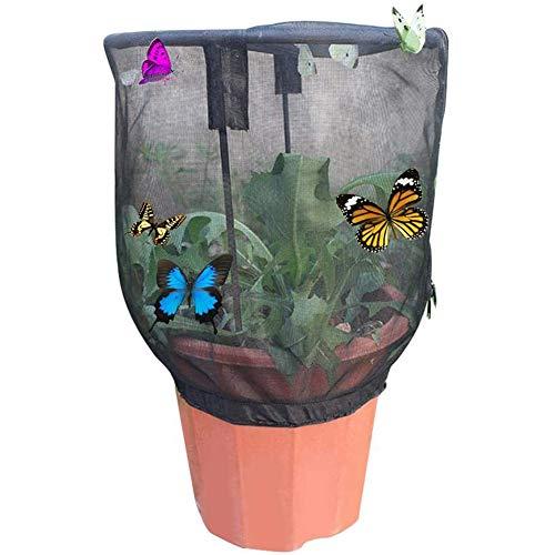 PETAMANIM Schmetterlinge Züchten Schmetterlingsfarm Schmetterlingsgarten Schmetterlinge Häuser für Schmetterlingszucht