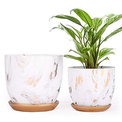 Ceramic Plant pots (7  5.5 Inch, Set of 2), Mod...