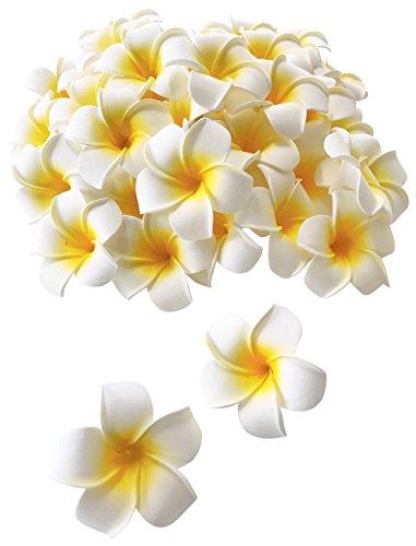 GJTr プルメリア 造花 ハンドメイド 飾りつけ 装飾 アクセサリー ホワイト 7cm 50個 セット