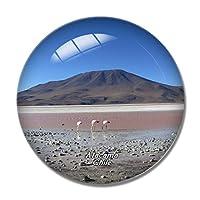 フラミンゴ火山塩湖アタカマ砂漠チリ冷蔵庫マグネットホワイトボードマグネットオフィスキッチンデコレーション
