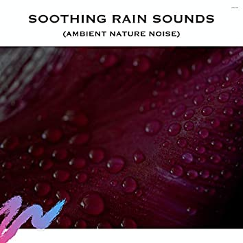 Soothing Rain Sounds (Ambient Nature Noise)