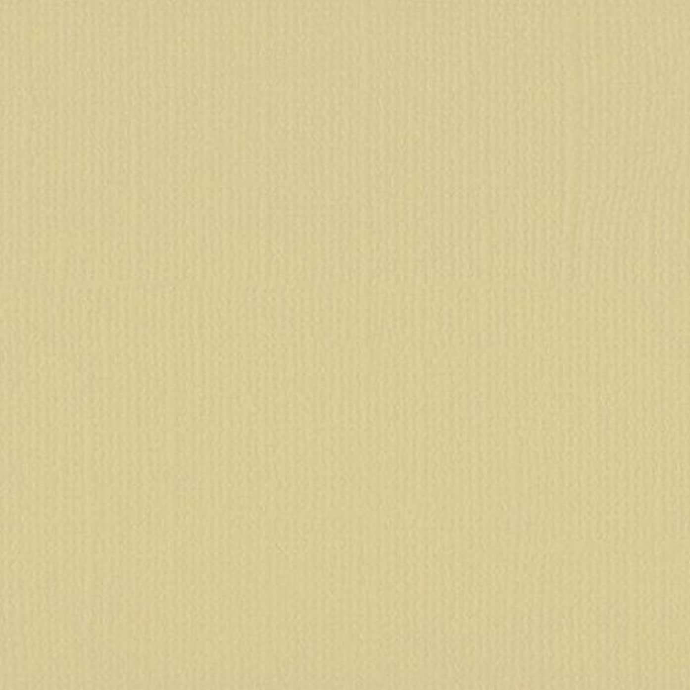 Vaessen Creative A4 Texture Florence Cardstock Canvas, Paper, Pudding, One Size