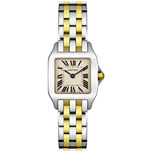 Cartier Women's W25066Z6 Santos Demoiselle Stainless Steel and 18K Gold Watch image