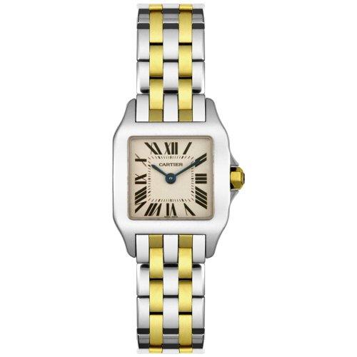 Cartier Santos Demoiselle - Reloj (Reloj de Pulsera, Femenino, Acero, Acero Inoxidable, Oro, Acero, Oro, Acero Inoxidable)