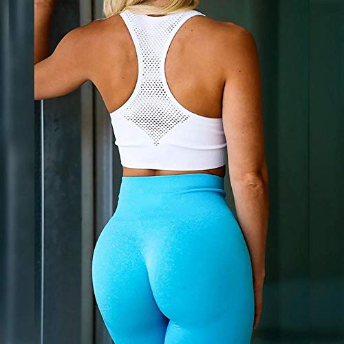 HPPL Naadloze legging Sport Dames Fitness Push-up Yogabroek Hoge taille Squat Proof Workout Hardlopen Sportkleding Gym Panty, Lichtblauw, M