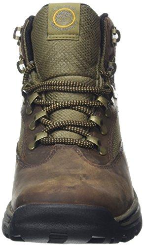 Timberland Women's Chocorua Trail Boot,Brown,7.5 M