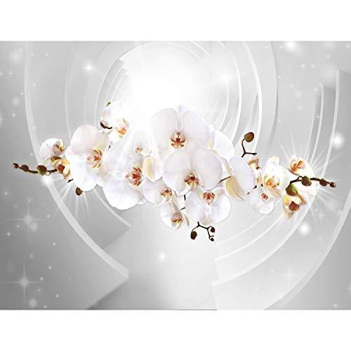 Runa Art Fototapete Blumen Orchidee Modern Vlies Wohnzimmer Schlafzimmer Flur - made in Germany - Grau 9235010b