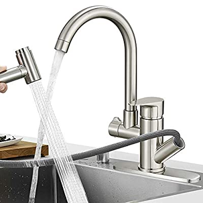 Hoimpro Pull Down Kitchen Faucet, High-Arc Single Handle Rv Kitchen Sink Faucet with Pull Out Sprayer and 360 Degree Swivel Sprayer, 2 Spout Utility Laundry Faucet, Brass/Brushed Nickel (1 & 3 Hole)