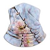 Prunus Mume Florece en Invierno bajo el Cielo Azul Pasamontañas Calentador de Cuello Reutilizable Sombreros Cuello Polaina Tubo Que Cubre la Cara Bandana para Acampar