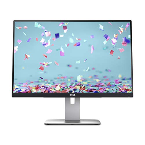 Dell UltraSharp U2415 - Monitor de 24.1
