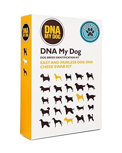 Top 10 best selling list for puppy genetic testing