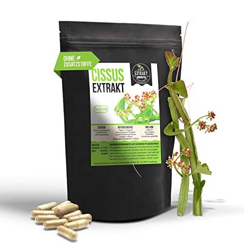 Cissus Quadrangularis EXTRAKT | 40% Ketosterone | 120 KAPSELN 400mg | laborgeprüft & frei von Zusatzstoffen | hochdosiert, vegan und in Deutschland hergestellt (Kapseln 120 Stk.)