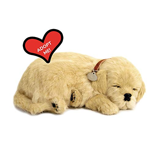 Perfect Petzzz 5519717 Cucciolo di Golden Retriever che dorme e respira, 25 cm