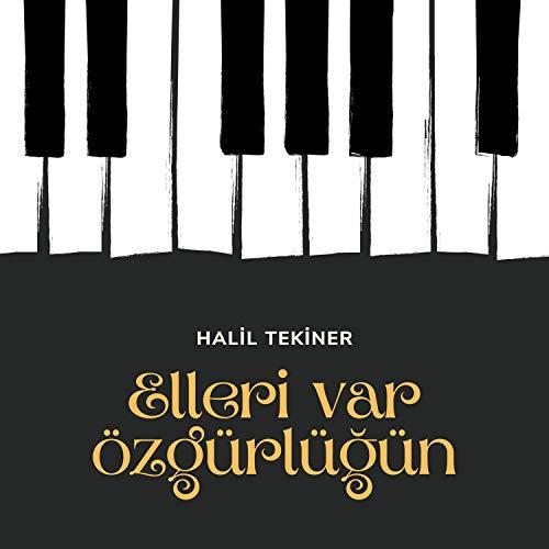 Bir Sergiden Tablolar: Turgut Zaim (Piyano: H. Tekiner)
