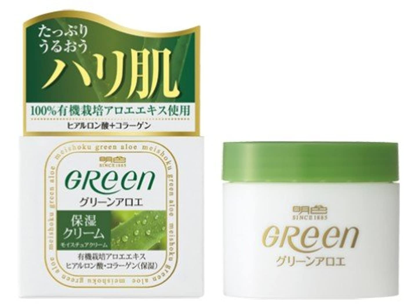 失タンザニアしがみつく明色グリーン モイスチュアクリーム 48G
