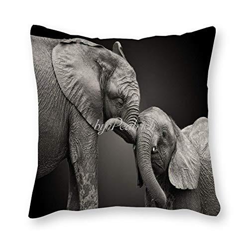 Viowr22iso Fundas de almohada decorativas de 22 x 22, lindos elefantes de bebé, animales salvajes África, funda de almohada para decoración del hogar para sofá cama silla