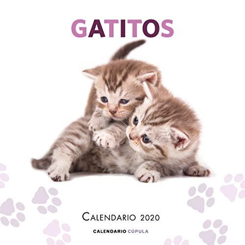 Calendario Gatitos 2020 (Calendarios y agendas)