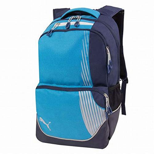 PUMA Rapide Blue & Gray 19' Backpack with Padded Laptop Sleeve School Travel