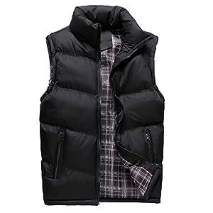 Ealmenn メンズ ダウンベスト スタンドカラー 光沢 中綿 軽量 厚手 暖かい 袖なし ジッパー カジュアルベスト 全5色