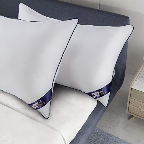 BedStory 2 Pack Sleeping Pillows, Down Alternative Dust Mite Resistant &...