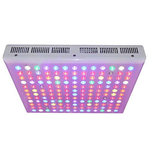 Rain City 2019 300W LED installatie groeilamp, 156 lamp-parels en mobiele telefoon app wifi control, full spectrum UV-infrarood straling voor de uitstoot van broeikas