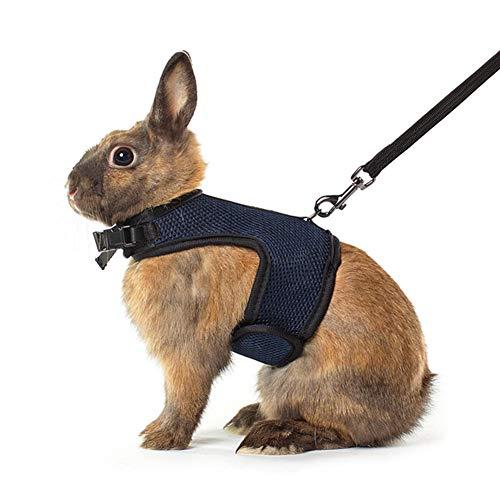 Qchengsan Weiches Geschirr mit Leine für Kaninchen, elastisch, für Kaninchen, Gehgeschirr, Leine, Haustiere, Kaninchen, Leine, Traktionsseil