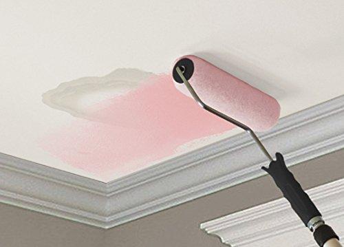 KILZ Color-Change Stainblocking Interior Ceiling Paint, White, 1-gallon