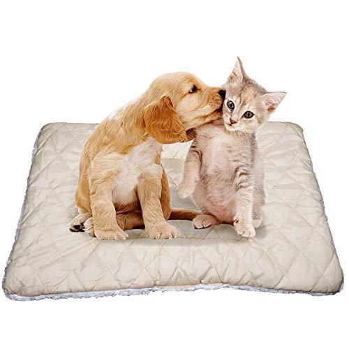 SILD - Materasso per cani e gatti, reversibile, lavabile in lavatrice, taglia XXXL