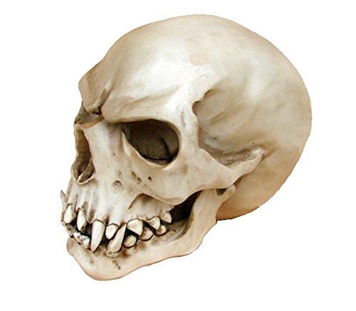 Joh.Vogler GmbH Replik Orc Schädel Markus Mayer Totenkopf Skull Gothic Totenschädel Ork