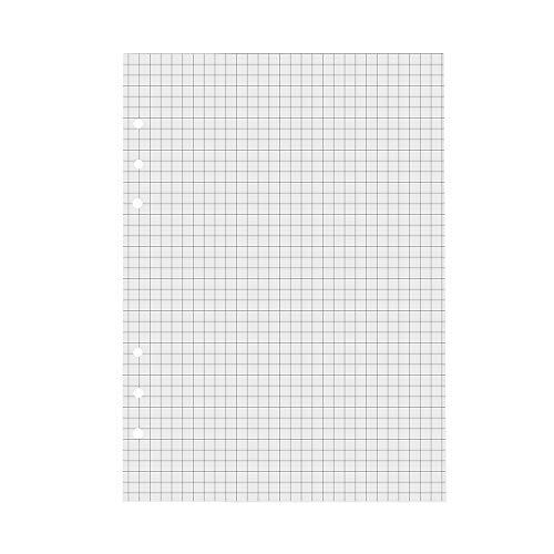 VEESUN A5 6 Löcher Refill Kariert Papier, 6-Ring Binder 120 Blatt / 240 Seiten für A5 Nachfüllbar Tagebuch Notizbuch Journal, MEHRWEG
