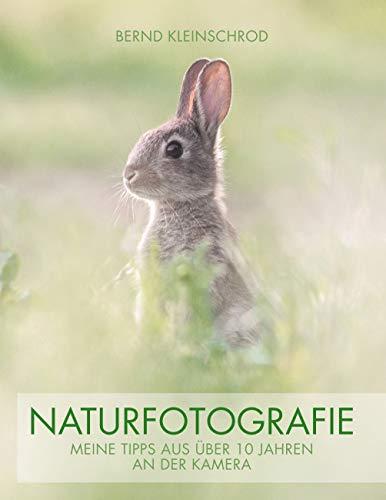 Naturfotografie: Meine Tipps aus über 10 Jahren an der Kamera
