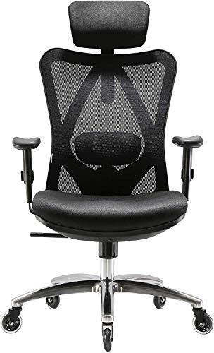 XUER Ergonomics Office Chair Mesh Computer Desk Chair,Adjustable Headrests Chair Backrest and Armrest's Mesh Chair (Black)