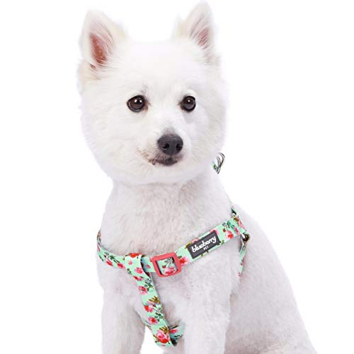 Blueberry Pet 9 Patterns Step-in Spring Scent Inspired Floral Rose Print Turquoise Dog Harness, Chest Girth 20
