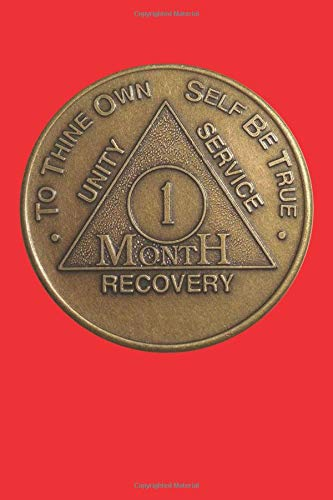 2 Year AA Sobriety Chip Challenge Coin JET BLACK Enamel 2nd II Recovery