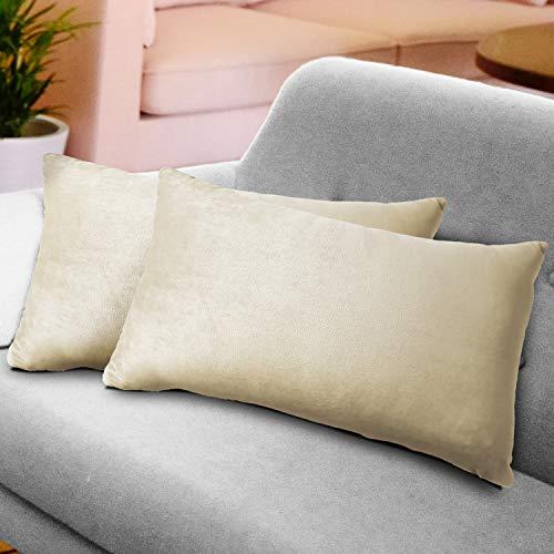 WEYON 2er Set Samt Kissenbezug Dekorative Dekokissen Kissenhülle mit Strapazierfähigem Verstecktem Reißverschluss für Sofa Schlafzimmer Auto 40X80cm Beige