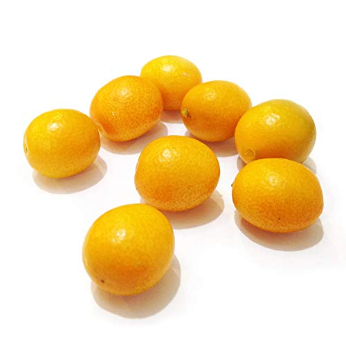 【産地直送】熊本県産 完熟金柑 キンカン 赤秀 3L 約3kg