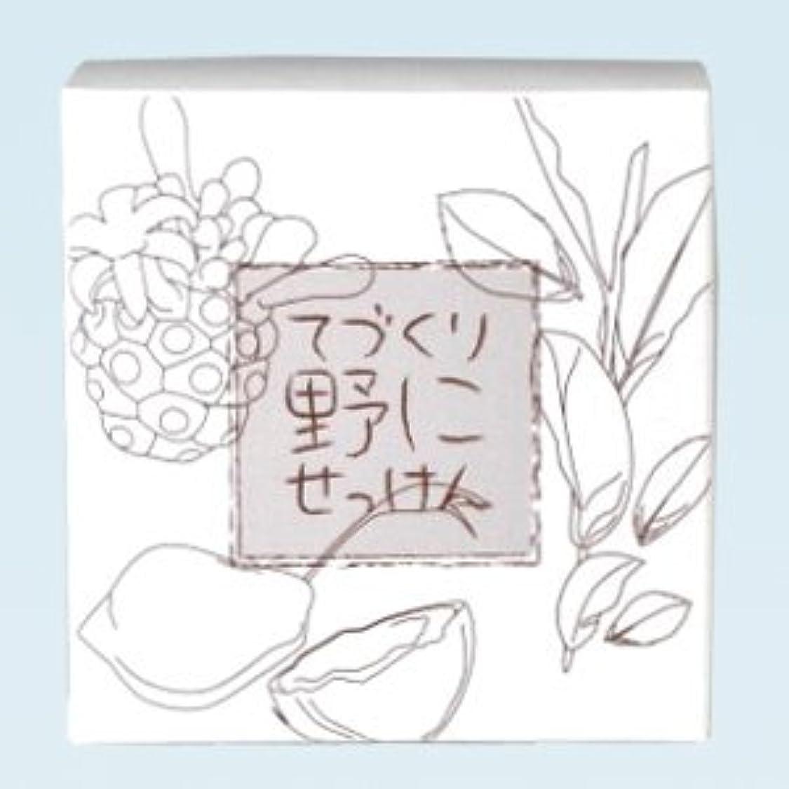掃く卒業不完全な緑茶ノニ石鹸 てづくり野にせっけん(115g)