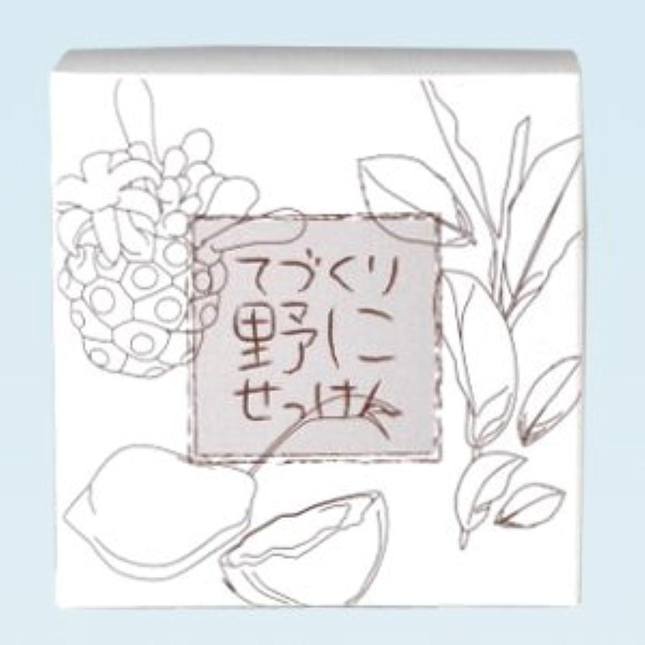 発信雄大な解明緑茶ノニ石鹸 てづくり野にせっけん(115g)