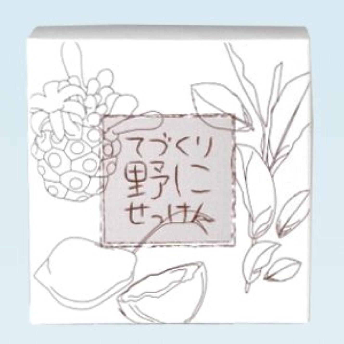 ピッチャークレジットモルヒネ緑茶ノニ石鹸 てづくり野にせっけん(115g)