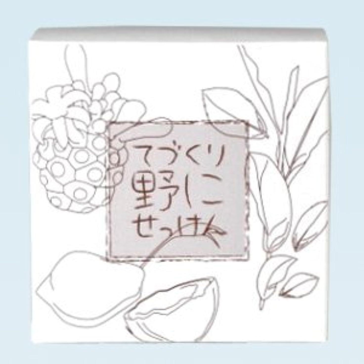 カートン最適魅力緑茶ノニ石鹸 てづくり野にせっけん(115g)