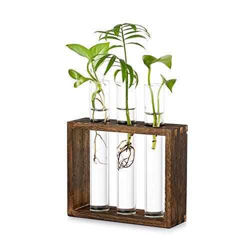 Tischplatte Hängende Glas Pflanzer Vermehrungsstation Moderne 3 Reagenzglas Blume Knospe Vase in Holz Stehen für Hydroponik Pflanzen Stecklinge Büro Home Decoration