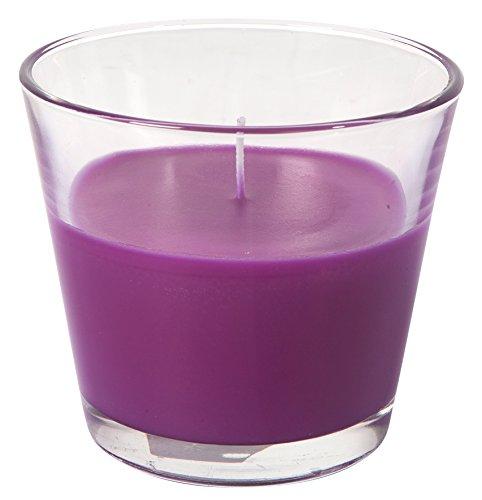 Le Chat 1194308 Bougie parfumée et colorée dans son contenant en verre conique - fuchsia / parfum génération patchouli