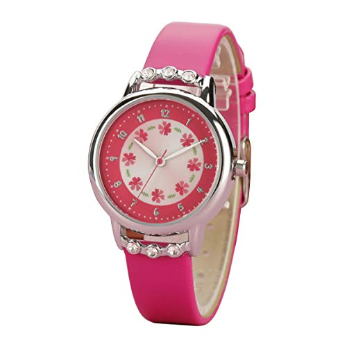 Product Image of the PASNEW Easy Use and Easy Reader Time Leather Band Watch for Girls (Rose)
